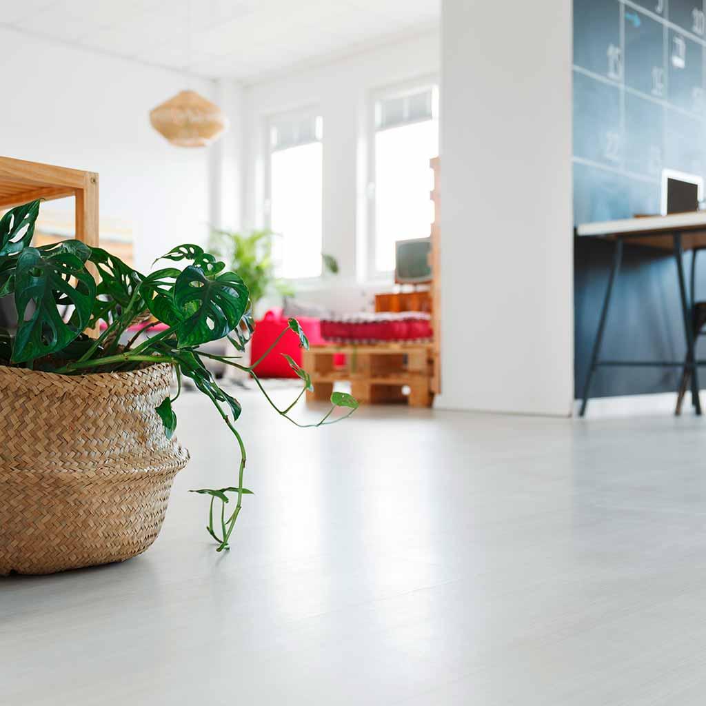 Ebenbild Vinylboden | Produkte Linien Standart | Zuhause